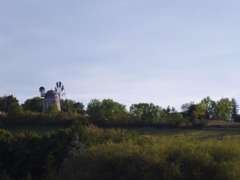 Holländer Windmühle vor Eckartsberga