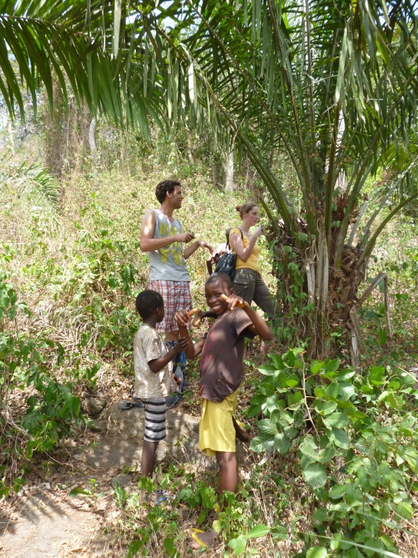 the kids collecting fruits